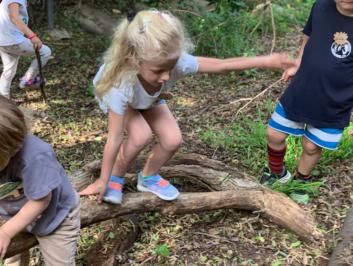 Little Naturalist Nature Camp